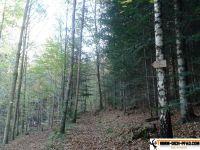 trimm-dich-pfad-sternwald-10