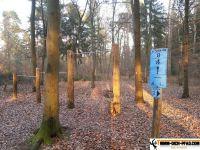 trimm-dich-pfad-iffezheim-15
