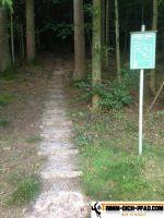 trimm-dich-pfad-oedsbach-10