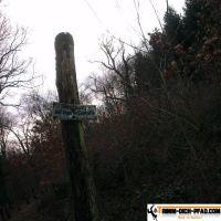 trimm-dich-pfad-mooswald-seehau-13