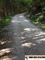vita-parcours-blumberg_16