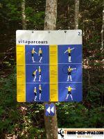 vita-parcours-blumberg_04