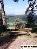 vita-parcours-blumberg_23