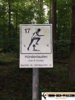 waldsportpfad_dietlingen_15