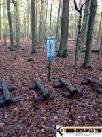 trimm-dich-parcours-linden-3