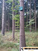 trimm-dich-pfad-buchholz-2