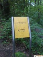 trimm_dich_pfad_aaper_wald_20