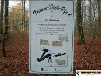 trimm-dich-pfad-grosshansdorf-9