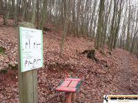 trimm-dich-pfad_annweiler_03