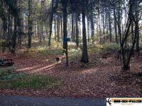 Trimm-Parcours-Brunnenfeld 27