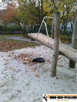 Fitnesspark-Ahlen11