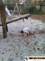 Fitnesspark-Ahlen8