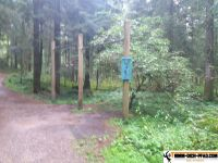 lindenberger_waldsee_pfad_23