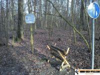 Trimm-Dich-Pfad-Gerolzhofen25