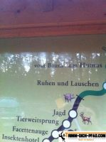 Trimm-Dich-Pfad-Lampertheim2