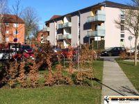 Sportpark-Flensburg8