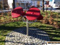 Sportpark-Flensburg6