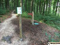waldsportpfad_auernheim_13