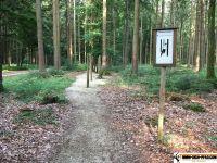 waldsportpfad_auernheim_16