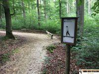 waldsportpfad_auernheim_11