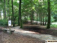 waldsportpfad_auernheim_14