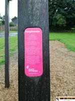 fitness_outdoor_park_heide_11