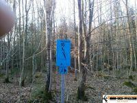 trimmd-ich-pfad-gruenwald-3