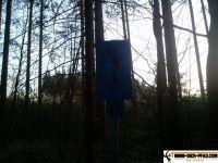 trimmd-ich-pfad-gruenwald-29
