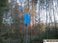 trimmd-ich-pfad-gruenwald-45