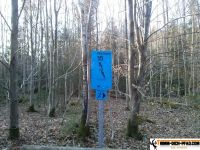 trimmd-ich-pfad-gruenwald-5