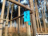 trimmd-ich-pfad-gruenwald-10