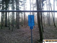 trimmd-ich-pfad-gruenwald-6