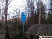 trimmd-ich-pfad-gruenwald-17