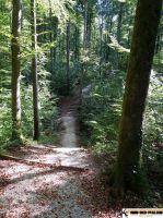 trimm-dich-pfad _Metzingen_15