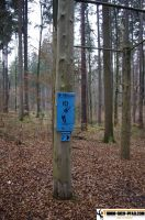trimm-dich-pfad-lonnerstadt-34