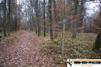 trimm-dich-pfad-lonnerstadt-5