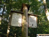 wald-sport-pfad_goeppingen_wien_14