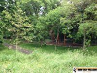 Generationen-Aktiv-Park_wien_14