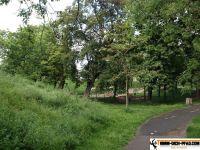 Generationen-Aktiv-Park_wien_13
