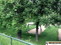 Generationen-Aktiv-Park_wien_15