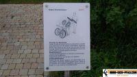 generationenpark_hannover_wuelfel_22