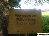 trimm-dich-pfad-waging_40