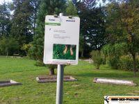 sportpark_stadtpark_neunkirchen_07