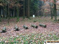 trimm-dich-pfad-wassertuedingen_31