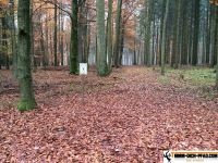 trimm-dich-pfad-wassertuedingen_27