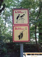 vita-parcours-regensburg-3