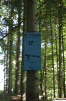 waldsportpark-ebersberg74