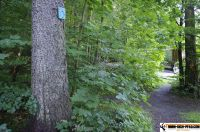 waldsportpark-ebersberg18