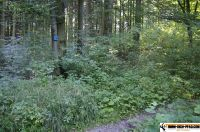 waldsportpark-ebersberg33