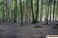 waldsportpark-ebersberg54